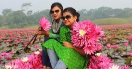 ভ্রমন গাইড শাপলা রাজ্য-সাতলা (ভিডিওসহ)