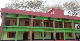 মাদারীপুরে মৌমাছির স্কুল !